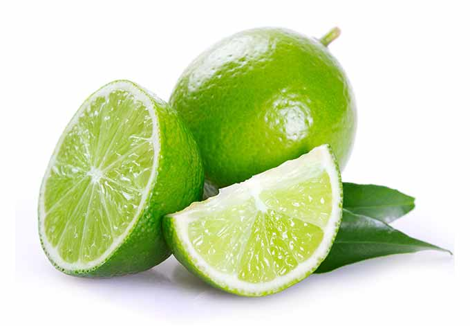 Limes are in season in all but summer.