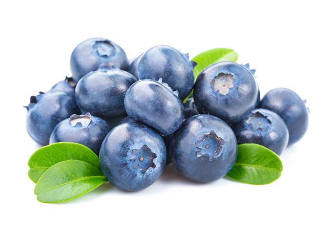Blueberries are in season in late spring through summer