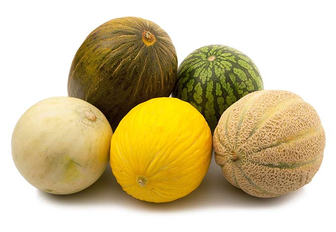 Watermelons Cantaloupe And Honeydew Melons Ask The Food Geek The cantaloupe, rockmelon (australia and new zealand), sweet melon, or spanspek (south africa) is a melon that is a variety of the muskmelon species (cucumis melo) from the family cucurbitaceae. watermelons cantaloupe and honeydew