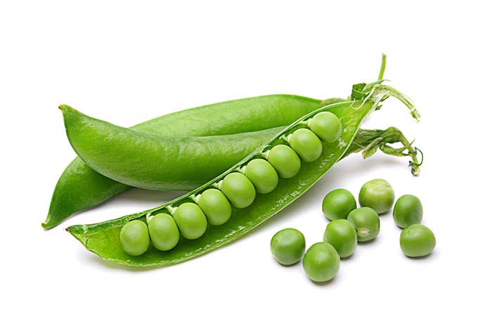 Sugar snap and shelling peas are in season in spring, summer and fall. Get more info on picking the best ones, storing them and of course, recipes.