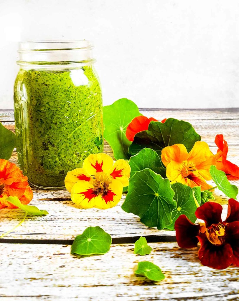 Edible Flowers | This nasturtium pesto is a perfect pasta sauce, sandwich spread, or vegetable dip. Vegetarian.