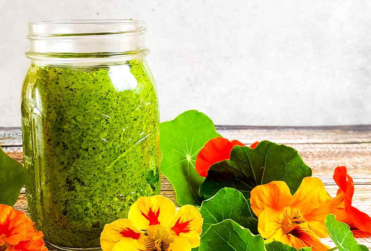 Edible Flowers | This nasturtium pesto is a perfect pasta sauce, sandwich spread, or vegetable dip. Vegetarian.