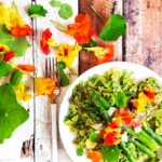 Fast dinner recipes - ready in 15 minutes. The slightly peppery nasturtium makes a great pesto. Keep it in the fridge and use it for this super fast weeknight dinner - a vegetarian spring pasta. Top with Nasturtiums (edible flowers).