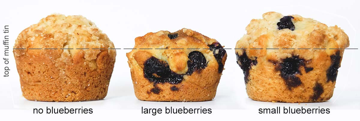 3 blueberry muffins from left to right: no blueberries rose high, large blueberries didn't rise as much, and a muffin with small blueberries rose as much as the one without blueberries.