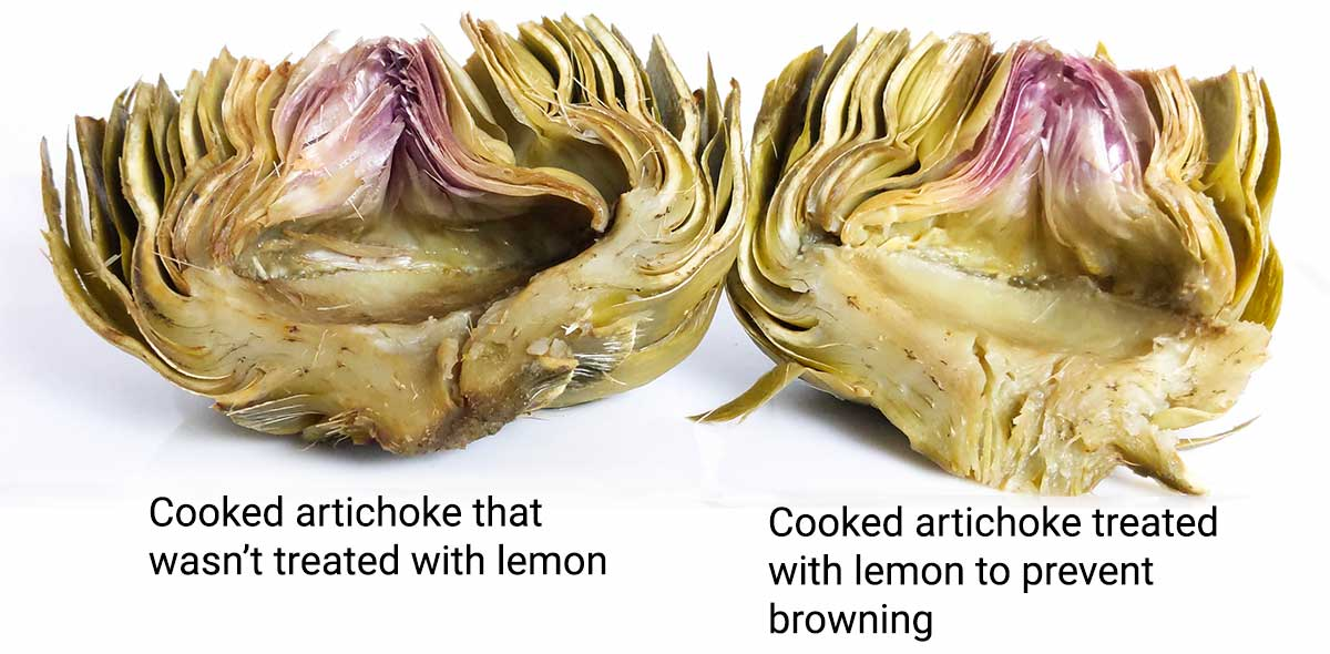 Two artichokes - one treated with lemon, and the other without. Their colors after being cooked are only slightly different.