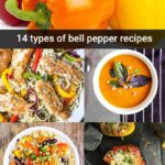 14 types of bell pepper recipe collage