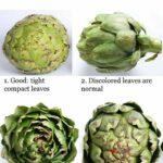 Picture of good and bad artichokes