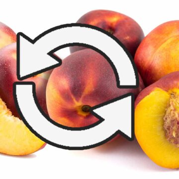 Difference between peaches and nectarines