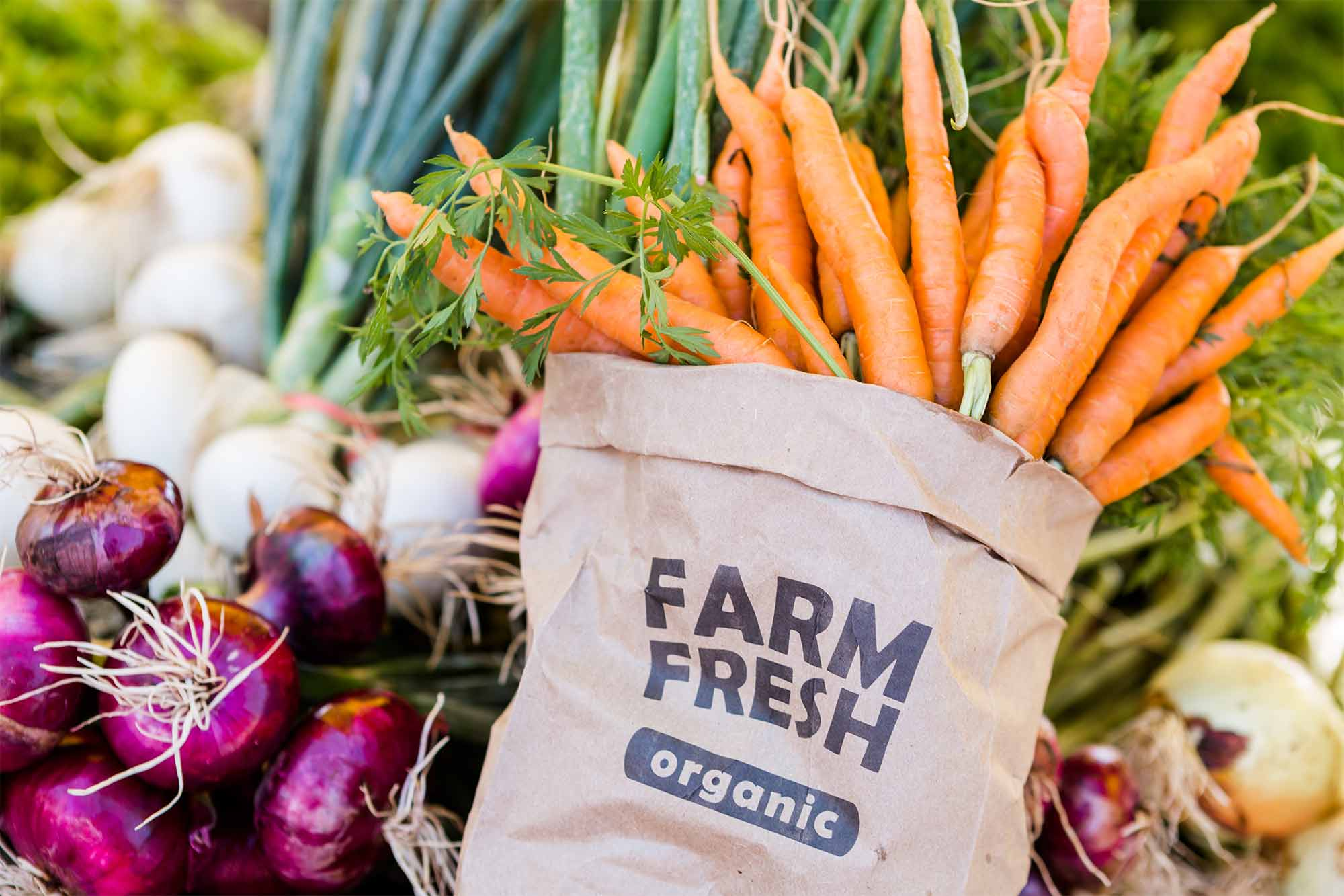 seasonal produce guides for each fruit & vegetable