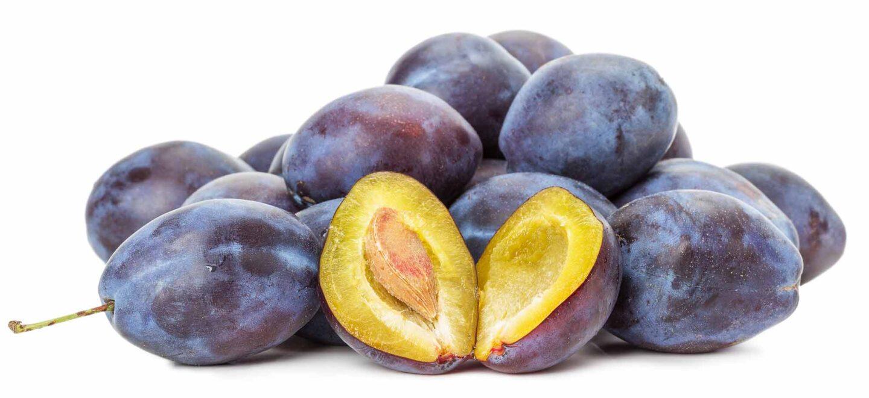 Black plum variety, used for prunes