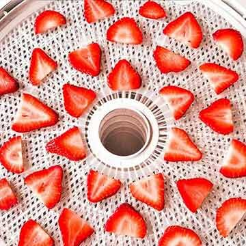 How to dry strawberries by The View from Great Island