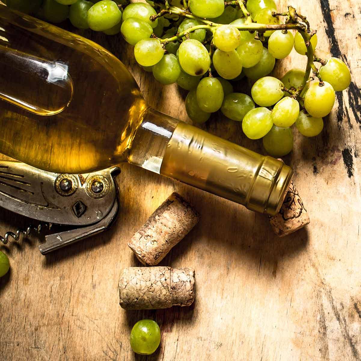 September seasonal fruit recipes: wine and grapes