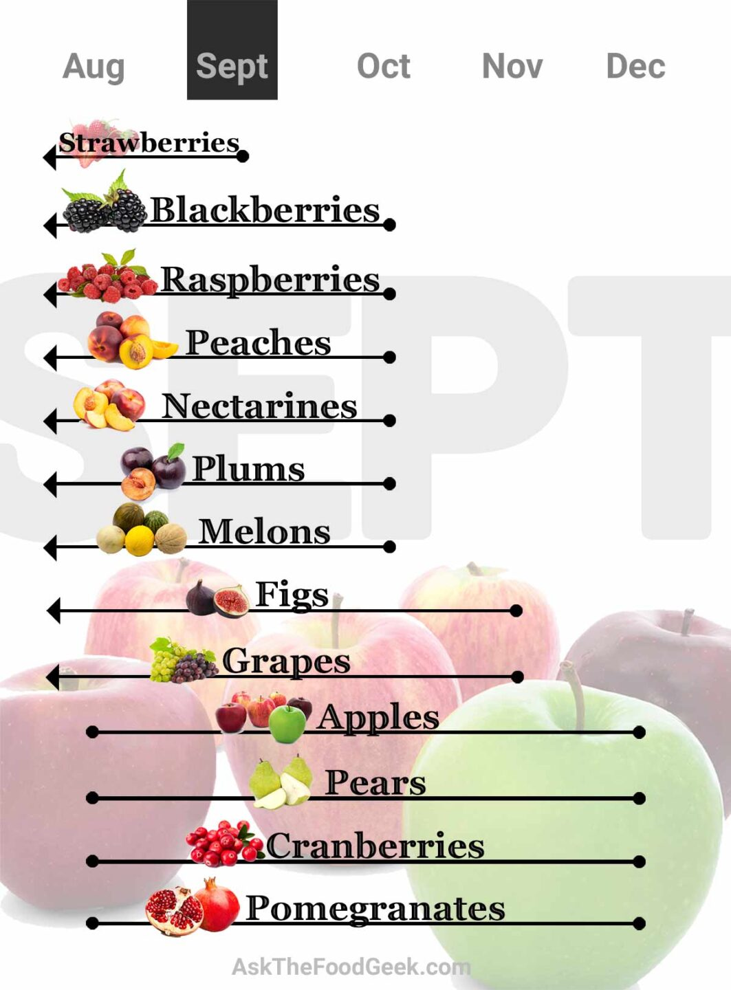 Chart of fruit in season for Septembert: strawberries, blackberries, raspberries, peaches, nectarines, plums, melons, figs, grapes, apples, pears, cranberries and pomegranates.