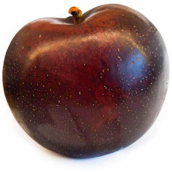 Black plum variety