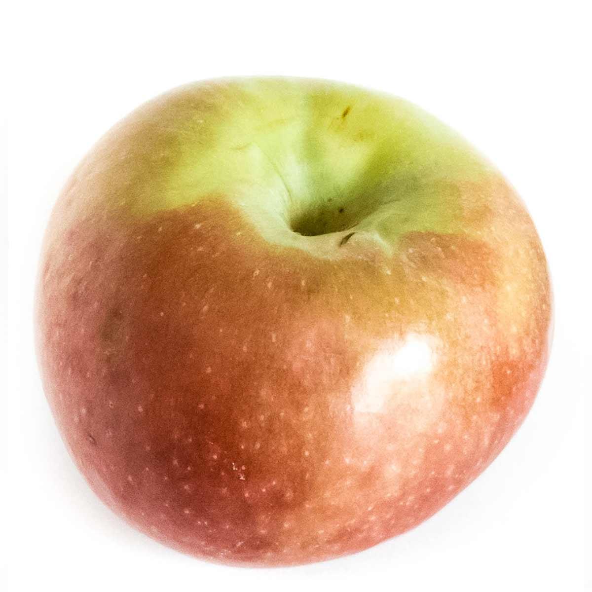 Apple varieties: Jonamac
