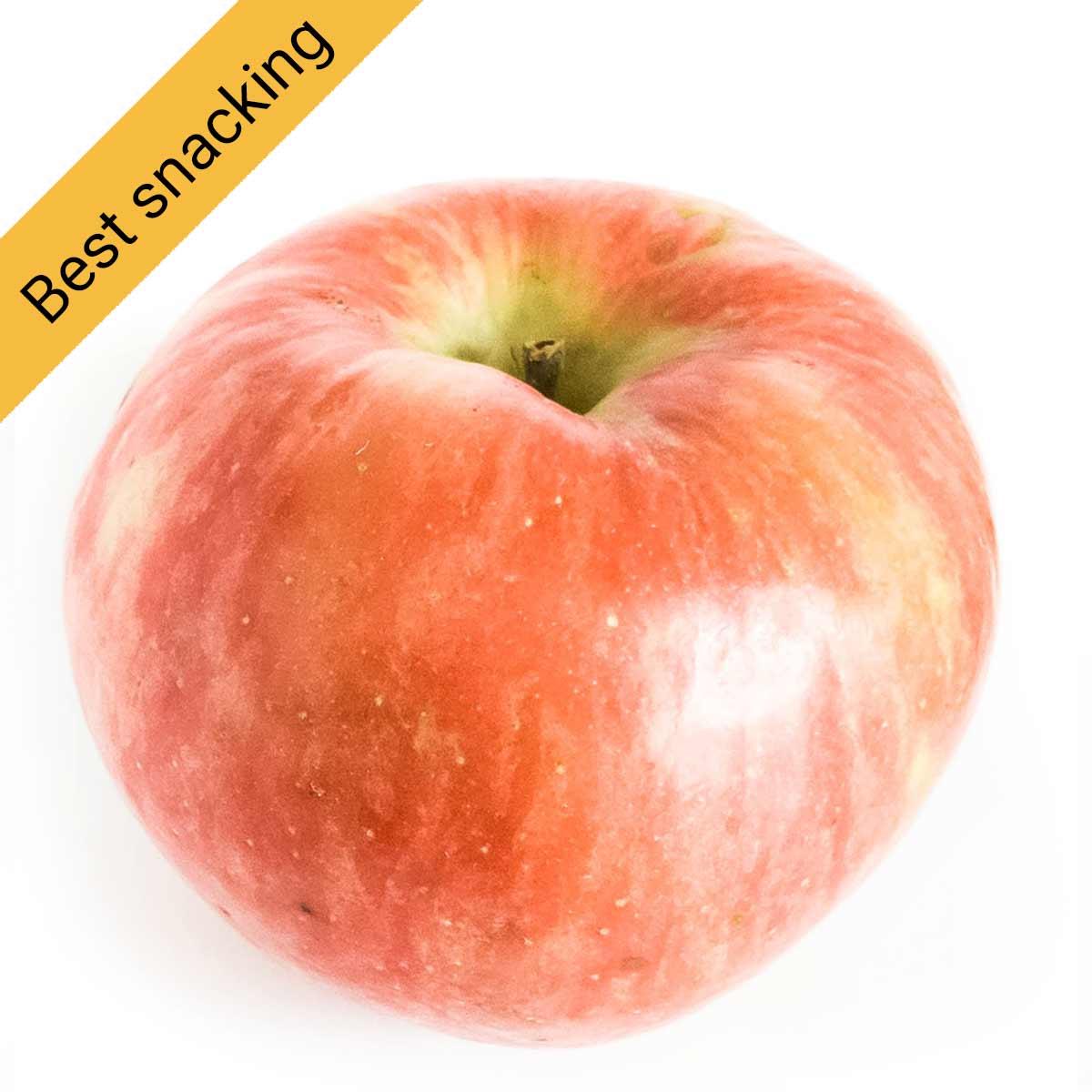 Best snacking apple: Honeycrisp