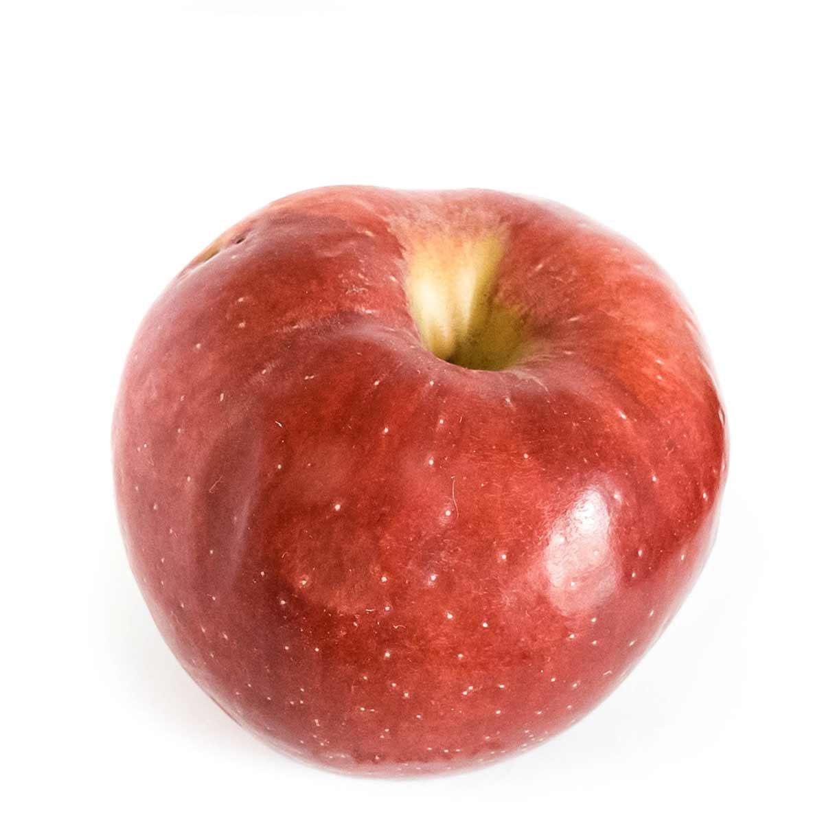 Mollie apple