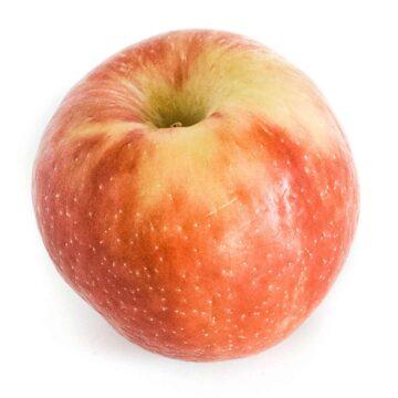 Juici apple variety