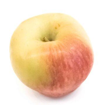 Ambrosia apple variety