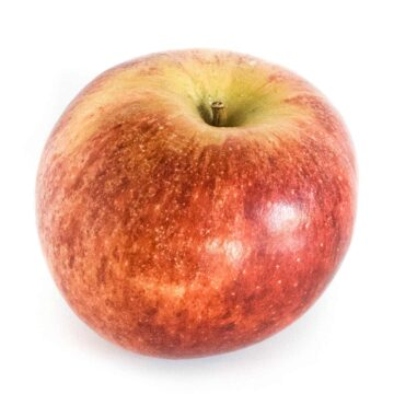 Envy apple variety